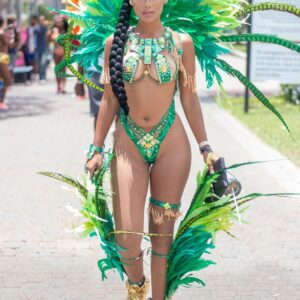 "5 things that I am going to miss from Jamaica Carnival of the ""past""…"
